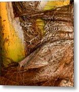 Palm Bark Metal Print