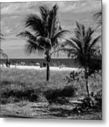 Palm Beach Road Trip Metal Print