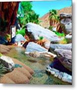 Palm Canyon Park Metal Print