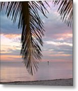 Palm Courtain II Metal Print