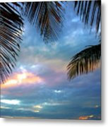 Palm Curtains Metal Print