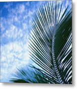 Palm Fronds And Clouds Metal Print