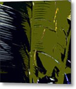 Palm Fronds Metal Print