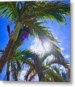 Palm Gazing Metal Print