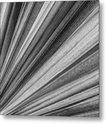 Palm Leaf Texture Metal Print