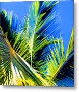 Palm Leaves Against The Sky 3 Ae  Metal Print