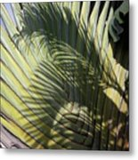 Palm On Palm Metal Print