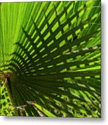 Palm Pattern No.1 Metal Print