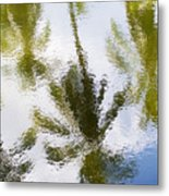 Palm Reflections Metal Print