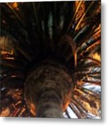 Palm Tree Canopy 0558 Metal Print