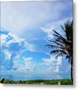 Palm Tree Dream Delray Beach Florida Metal Print