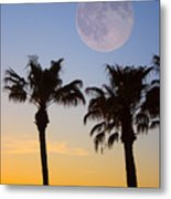 Palm Tree Full Moon Sunset Metal Print