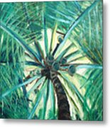 Palm Tree Metal Print