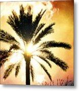 Palm Tree In The Sun #2 Metal Print