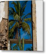 Palm Tree In The Window Metal Print