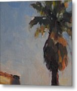 Palm Tree In Winter Light Metal Print