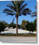 Palm Tree Psl. Metal Print