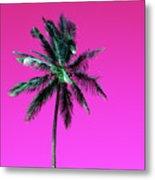 Palm Tree Puerto Rico Metal Print