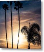 Palm Tree Sunset Silhouette Metal Print
