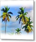 Palm Trees - 5 Metal Print