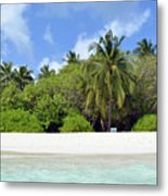 Palm Trees And Exotic Vegetation On The Beach Of An Island In Maldives Metal Print