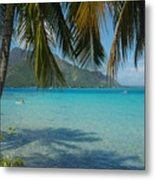 Palm Trees Cast A Shadow In Blue Water Metal Print