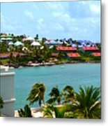 Palm Trees Of Oyster Bay Metal Print