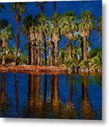 Palm Trees On The Water Metal Print