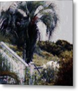 Palmetto Beach Metal Print