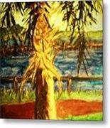 Palmetto Tree Metal Print