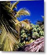 Palms All Around 2 Metal Print