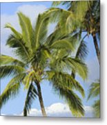Palms And Mountaintops Metal Print