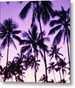 Palms And Purple Sky Metal Print