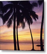 Palms And Sunset Sky Metal Print