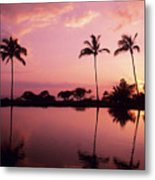 Palms At Still Lagoon Metal Print