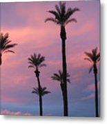 Palms At Sunset Metal Print