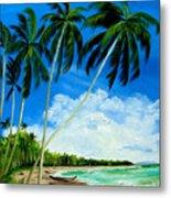 Palms By The Ocean Metal Print