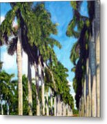 Palms Metal Print by Jose Manuel Abraham