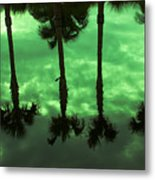 Palms Of Florida Metal Print