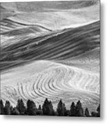 Palouse Field 2740 Metal Print