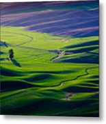 Palouse - Later Afternoon Metal Print