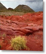 Pampas Grass In The Desert Torotoro National Park Bolivia Metal Print