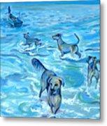 Panama. Salted Dogs Metal Print