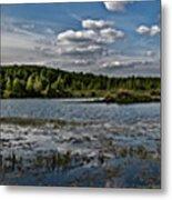 Panorama Of The Lake In Elkino Metal Print