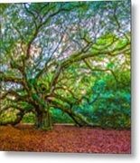 Panoramic Angel Oak Tree Charleston Sc Metal Print
