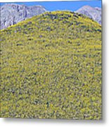 Panoramic View Of Desert Gold Yellow Metal Print