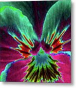 Pansy 01 - Photopower - Thoughts Of You Metal Print