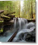 Panther Creek In Gifford Pinchot National Forest Metal Print