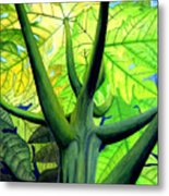 Papaya Tree Metal Print
