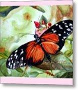 Papillon I Metal Print